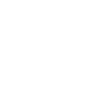 Wwise-Logo-2016-Certified_user_251_R-White